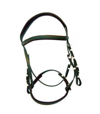 Bridle Set Race